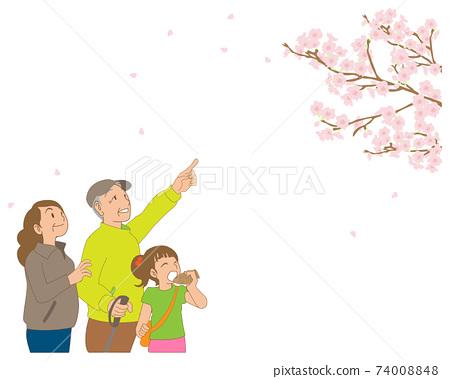 꽃놀이 벚꽃 수석 부부 손자 74008848