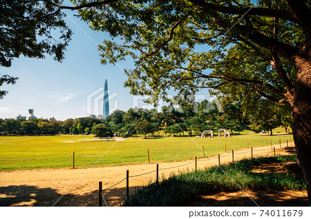 Olympic park green forest trail in Seoul, Korea 74011679