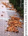 枯葉在路面上 74011993
