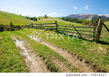rural landscape in mountains. wooden fence along the path through grassy fields on rolling hills. snow capped ridge in the distance beneath a blue sky. beautiful nature scenery on a bright sunny day 74014427