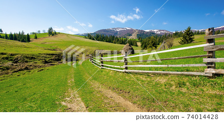 rural landscape in mountains. wooden fence along the path through grassy fields on rolling hills. snow capped ridge in the distance beneath a blue sky. beautiful nature scenery on a bright sunny day 74014428