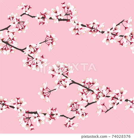 Sweet pink sakura flower seamless pattern on pink background 74028376