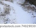 눈 내린 날의 아름다운 풍경 74029030