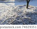 눈 내린 날의 아름다운 풍경 74029351