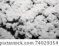 눈 내린 날의 아름다운 풍경 74029354