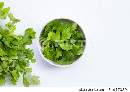Chinese celery on white background 74057080