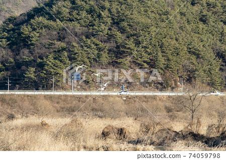 정양늪,합천군,경남 74059798