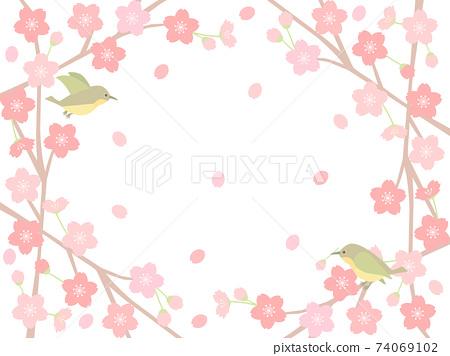 櫻花150櫻花鳥鳥 74069102