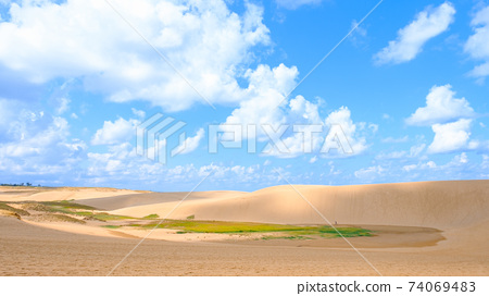 鳥取沙丘 74069483