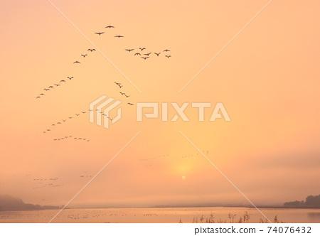 冬季泉島的航班 74076432