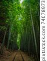 Former Japanese National Railways Kurayoshi Line Taikyuji Station Ruins-Kurayoshi Line Discontinued Bamboo Forest (August 2020) 74078973