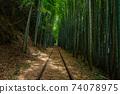 Former Japanese National Railways Kurayoshi Line Taikyuji Station Ruins-Kurayoshi Line Discontinued Bamboo Forest (August 2020) 74078975
