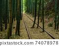 Former Japanese National Railways Kurayoshi Line Taikyuji Station Ruins-Kurayoshi Line Discontinued Bamboo Forest (August 2020) 74078978