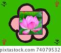 벚꽃과 연꽃과 사주 74079532