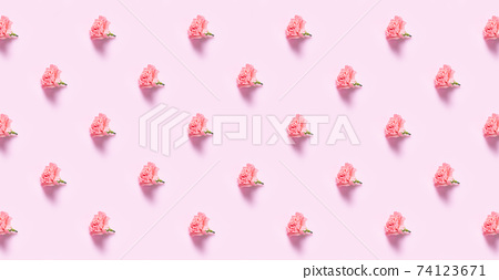 Carnation flowers with minimalist 74123671