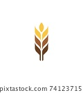 Agriculture wheat vector 74123715