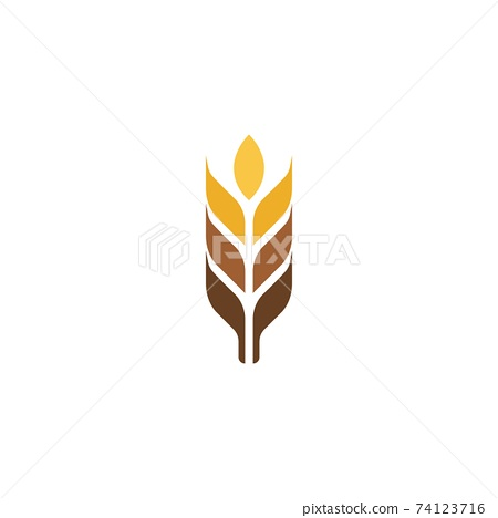 Agriculture wheat vector 74123716