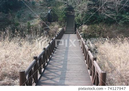 산책길 74127947