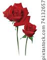 紅rose_one輪 74132657
