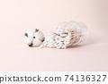분홍색 배경의 면봉과 목화솜 74136327