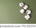 초록색 배경과 목화솜 나뭇가지 74136354