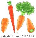 各種胡蘿蔔/線1色 74141430