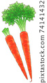 Kyoto carrot, line 1 color 74141432