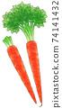 京都胡蘿蔔,線1顏色 74141432