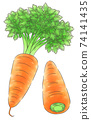 Carrot / line 1 color 74141435