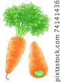 紅蘿蔔 74141436