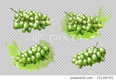Realistic grapes bunches and splashes set isolated 74146745