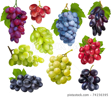 Realistic grapes set collection 74156395