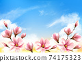 Nature spring background with beautiful magnolia branches on blue sky. Vector. 74175323