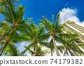 夏威夷 懷基基海灘 旅遊勝地 74179382