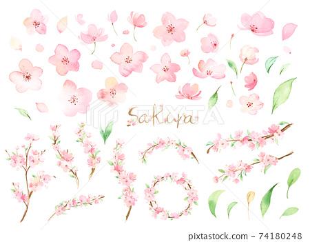 손으로 그린 수채화 | 벚꽃의 부품 일러스트 세트 74180248