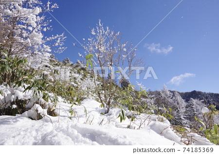 Winter mountain snow scene 74185369