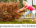 Woman removing pulling dead tree 74192806