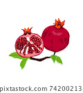 Vector illustration of  pomegranate and lots of ripe pomegranate seeds 74200213