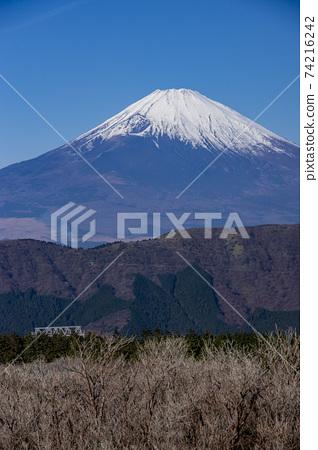 箱根大涌谷的景色 74216242