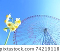 Narcissus and Ferris wheel in Kasai Rinkai Park 74219118