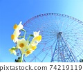 Narcissus and Ferris wheel in Kasai Rinkai Park 74219119