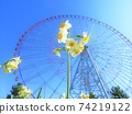 Narcissus and Ferris wheel in Kasai Rinkai Park 74219122
