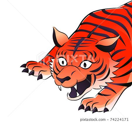 Red tiger upper body 74224171