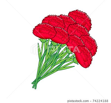 Carnation bouquet 74224188
