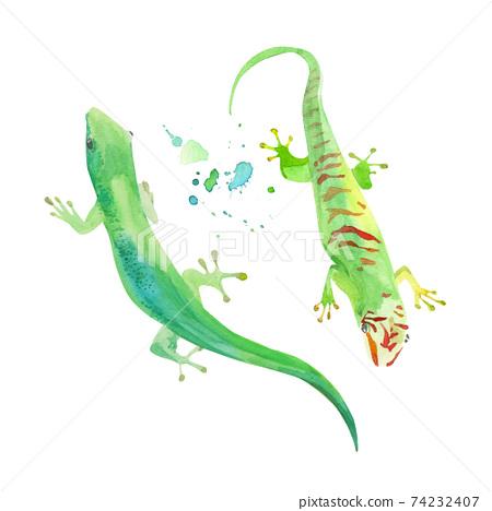 Gecko watercolor illustration, vector template. Green exotic lizard. Iguana, tropical leopard reptile icon.  74232407