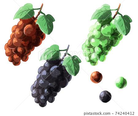 葡萄葉,水彩風格 74240412