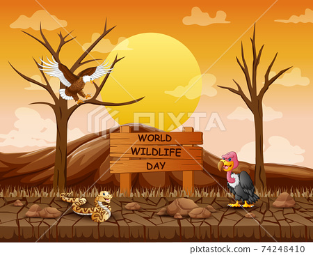 World Wildlife Day sign with animals in the dry forest 74248410