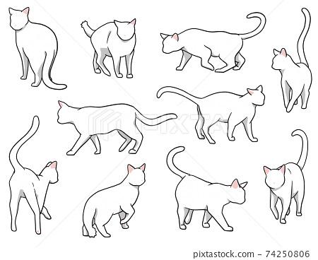 Osanpo貓白貓套裝 74250806