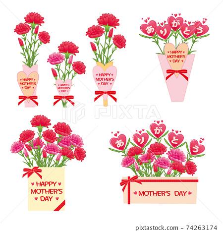 康乃馨花束套裝 74263174