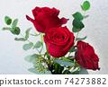 在沖繩開花的紅玫瑰在沖繩亞熱帶的美麗的花朵 74273882